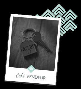 Vente immobilière Saint Lary